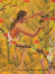 An ancient Hawaiian boy catches a native bird for its feathers.